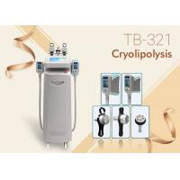 5 Handles RF Ultrasound Cavitations Fat Freezing Cool Sculpting Cryolipolysis Machine Manufactures