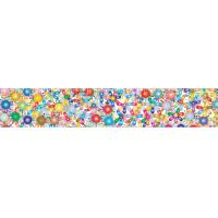 2x12.25 Inches Rulers 3D Lenticular Printing Service With Multicolored Spinning Wheels Manufactures