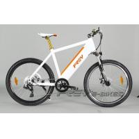 China Mountain electric bikes-FY-TDE08Z on sale