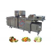 Air Bubble Type Fruit and Vegetable Washing Equipment Supplier Manufactures