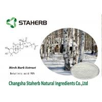 Betulinic Acid Birch Bark Extract , Herbal Reference Standards Antitumor Manufactures