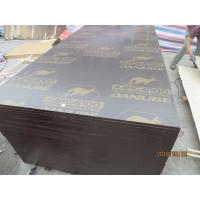 Buy cheap Building Materials kangaroo brand plywood for Pakistan,karachi from wholesalers