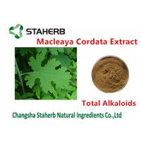 Antibacterial Plant Macleaya Cordata Extract Total Alkaloids 20%-60% Brown Color Manufactures