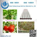 "5/16"" x 4 feet long Pencil Point end FRP Fiberglass Tomato Grape Stake Manufactures"