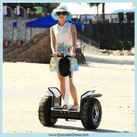 China High tech easy control myway scooter 2 Wheel electric scooter/auto-balancing electro scooter/human transporter on sale