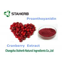 Cranberry Extract Organic / Natural Antioxidant Supplement Violet Fine Powder Manufactures