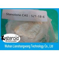 CAS 521-18-6 Bodybuilding Anabolic Steroids Muscle Mass Stanolone Androstanolone