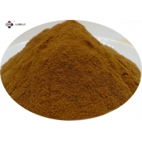 Light Brown 1% Ligustilides Dong Quai Root Powder Manufactures