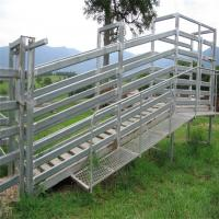 Hot Dipped Galvanized Sheep Loading Ramp Plans Livestock Handling Equipment Manufactures