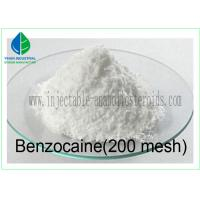 99% Pain Killer Powder Benzocaine ( 200 Mesh / 20-50 Mesh ) 94-09-7 Manufactures