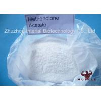 Quality Raw Lean Muscle Methenolone Enanthate Steroids Hormone Powder Methenolone for sale