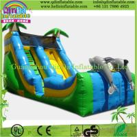 strong colored inflatable slide,pvc promotion giant inflatable slide for sale Manufactures