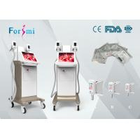 China professinal 2 freeze handles work together weight loss cryo coolsculption body shaping machine on sale