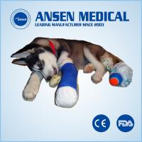 Animal Hospital Medical Supplies Casting Tape for sale
