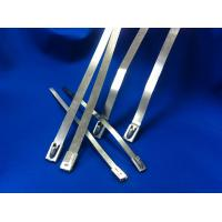 Width 10mm Releasable Stainless Steel Cable Ties For Shipbuilding Industry Manufactures