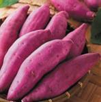 natural purple farm foods sweet potato purple corn black tomato Manufactures