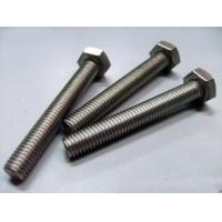China Multi Specification Hot Dip Galvanized Bolts / Stainless Steel Hex Bolts on sale