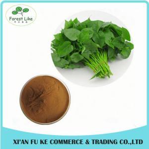 China Organic Sweet Potato Leaf Extract Powder 10:1 for improve Hunman Immunity on sale