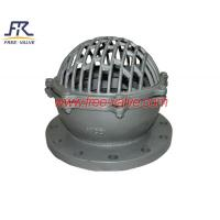 Bottom Foot Valve for Water Supply,Stainless Steel Flanged Water Pump Foot Valve,Plastic foot valve Manufactures