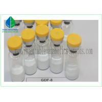 Human Growth Peptides Gdf-8/Gdf 8 Myostatin for Muscle Bodybuilding Manufactures