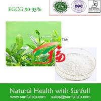 China Green Tea Extract, 100% Natural , EGCG, EC, Epicatechin,organic on sale