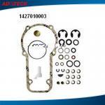 6281104216 / 1427010003 Common Rail Diesel Fuel Injector Repair Kits Manufactures