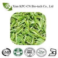 China GMP factory supply the green tea extract on sale