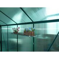 6X10FT anodized strong aluminum greenhouse Manufactures