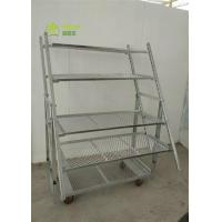 Buy cheap ISO9001 Danish Container Dutch Plant And Flower Display Cart Trolleys from wholesalers