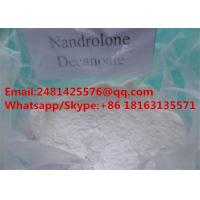 Muscle Growth Nandrolone Steroids DECA Durabolin / Nandrolone Decanoate CAS 360-70-3 Manufactures