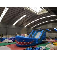 Blue Shark Blow Up Slippery Slide Inflatable Lawn Water Slide For Kids And Adults Manufactures