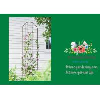 Metal Wall Garden Flower Trellis Powder Coated For Climbing Flowers Manufactures