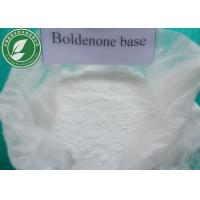 Muscle Building 99% Steroid Powder Boldenone Base For Fitness Manufactures