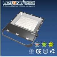 100-110lm / W High Brightness Outdoor Led Flood Lights 200w 3030SMD CRI >80 Manufactures