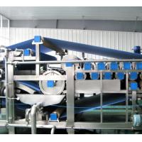 China Low Noise Commercial Food Processing Equipment , Ginger Processing Machine Power 3.3kw on sale