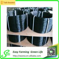 Pleated Insect Screen Polyester Pull Cord/ Window Screen Polyester Wire / Screen String Manufactures