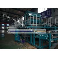 High Automation Egg Carton Making Machine For Egg Tray / Fruit Tray / Wine Tray Manufactures