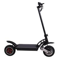 China Wonderful 500W 48V Two Wheel Self Balancing Scooter Electric Skateboard Scooter For Youth on sale