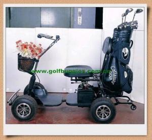 Electric Golf Cart Buggies Manufactures