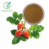 Fruit Extract Powder Herbal Extract Rose Hips Extract Powder 5% VC Manufactures