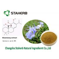 Carnosic acid,Rosemary extract,Anti-inflammation,Pure natural plant extracts Manufactures