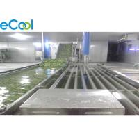 Light Weight Commercial Cold Storage , Cold Storage For Vegetables And Fruits Manufactures