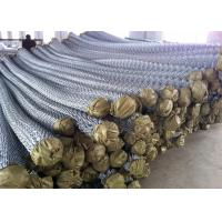 Hot Dipped Galvanized Chain Wire Fence for sale Manufactures