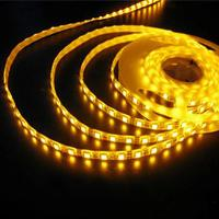 60LED/m 5050SMD IP65 Waterproof LED Christmas Light LED Rope Light from Youth Green Lighting Technology Co., Ltd Manufactures