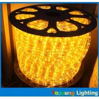 China Outdoor string lights 1/2'' 2 wire low voltage 24/12v darulights led on sale