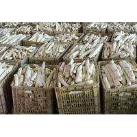 Rhizoma Dioscoreae Fresh Chinese Herbal Medicines Yam For Spleen And Stomach Manufactures