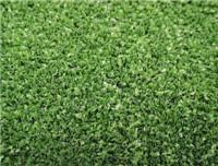 China Leisure Grass WF-KW1 wholesale