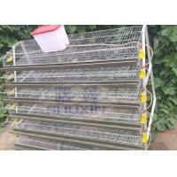 China Galvanized Commercial Quail Laying Cage , Quail Battery Cages Automatic Feeding on sale