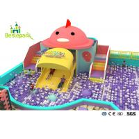 Rainbow Chicks Kids Plastic Indoor Playground With Slide Multi - Functional Manufactures