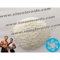 7-Keto-dehydroepiandrosterone 566-19-8 Safe Steroid Natural Muscle Growth White Powders Manufactures